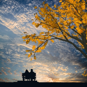 couple on bench watiching sunset